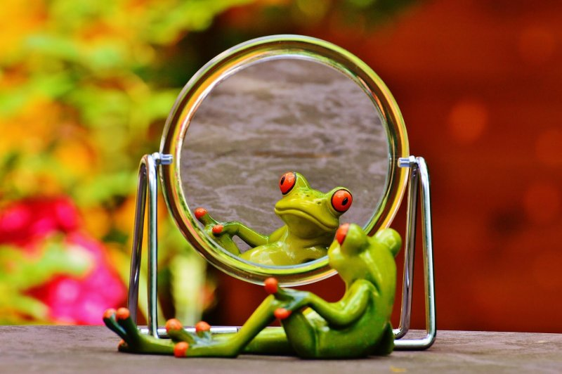 Frosch vor dem Spiegel für Selbstbild Workshop in Christels Scheune Hanau