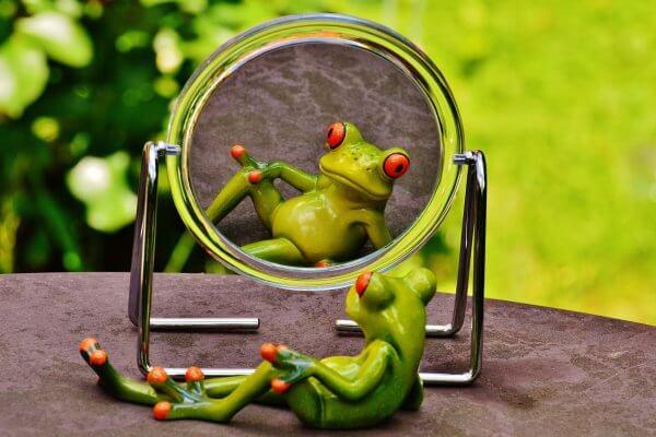 Frosch vor dem Spiegel als Selbstbild bei Christels Scheune Coaching Hanau